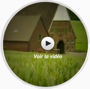 Video fabrication NM Plus